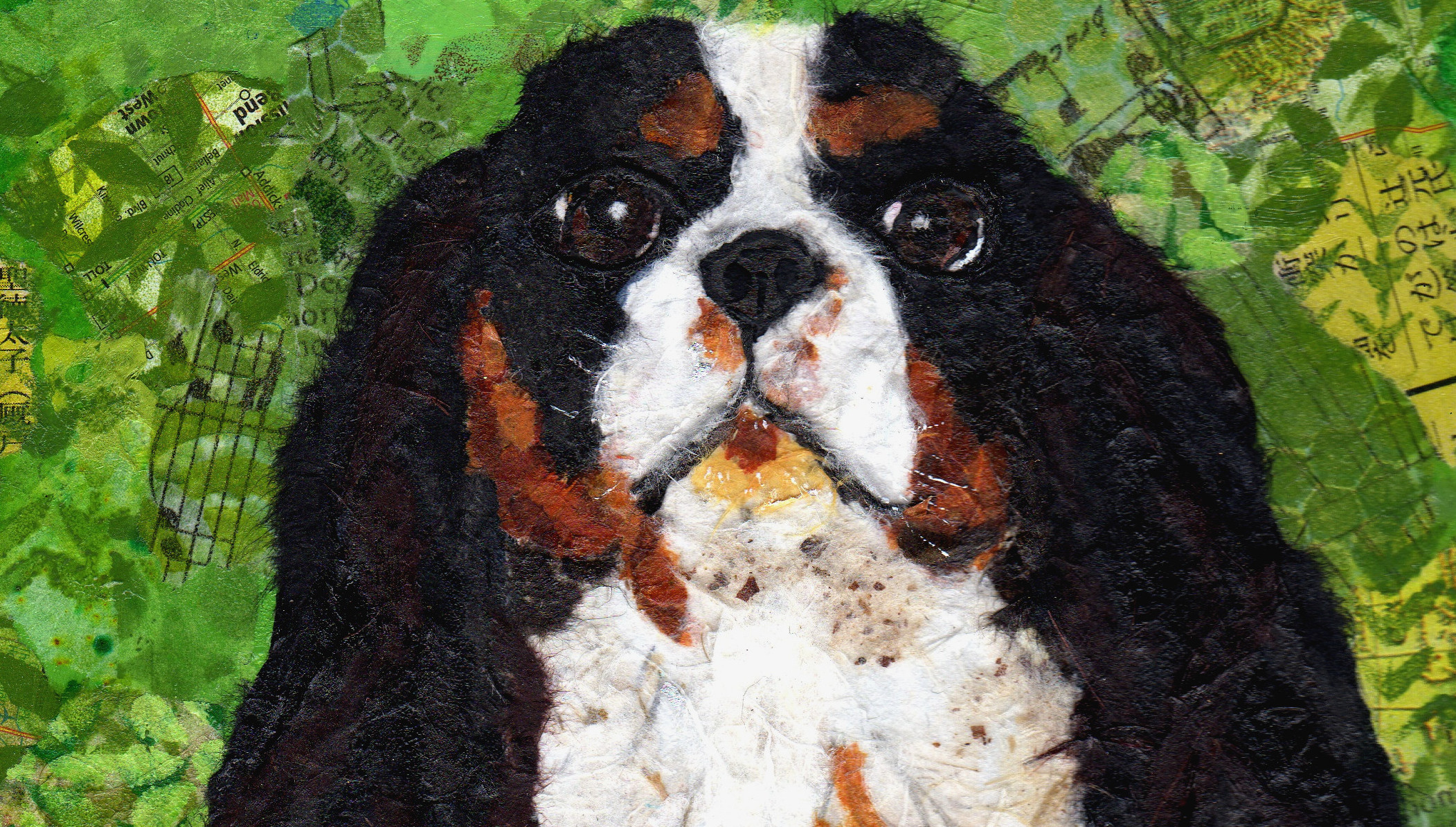 Dog_Cooper_ImageCarousel